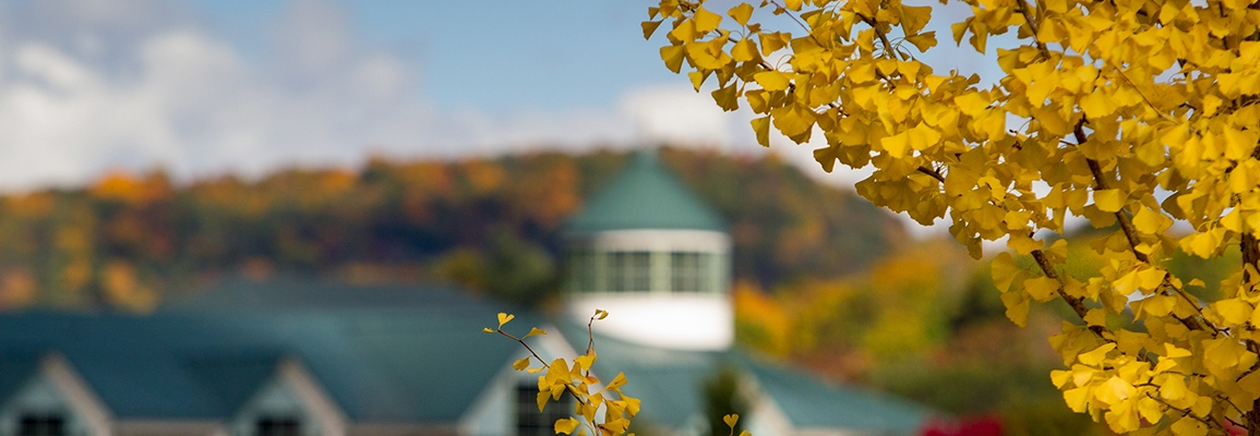 autumn leaves with library cupola in background